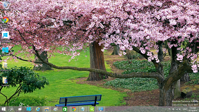 Cherry Blossoms of Japan theme for Windows