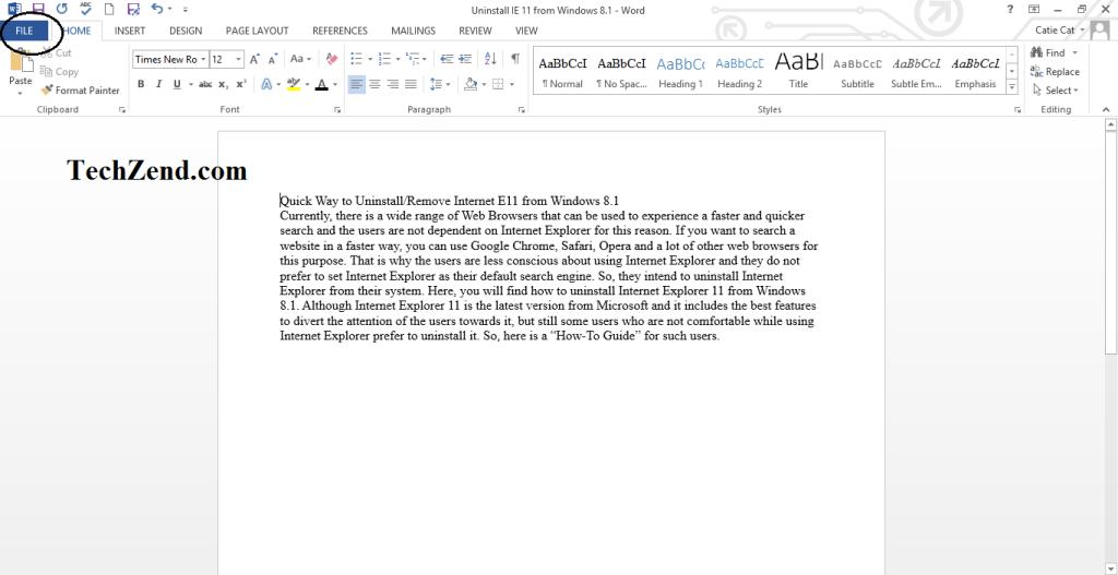 File menu in MS Word-1