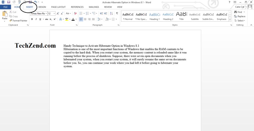 Insert Menu in MS Word-1
