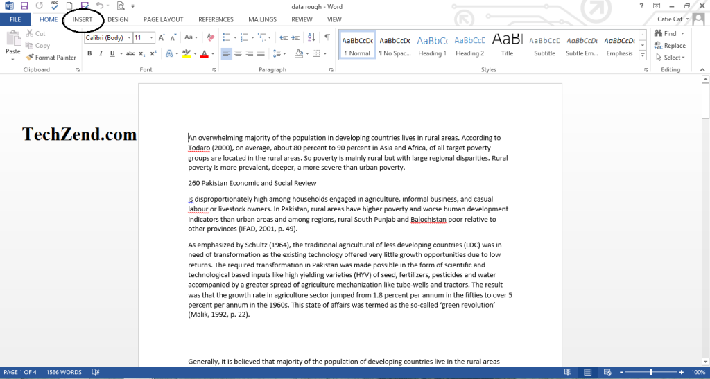 Insert Option in MS Word 2013-1