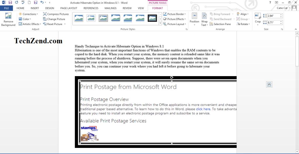 Screenshot Added to Word Document-5