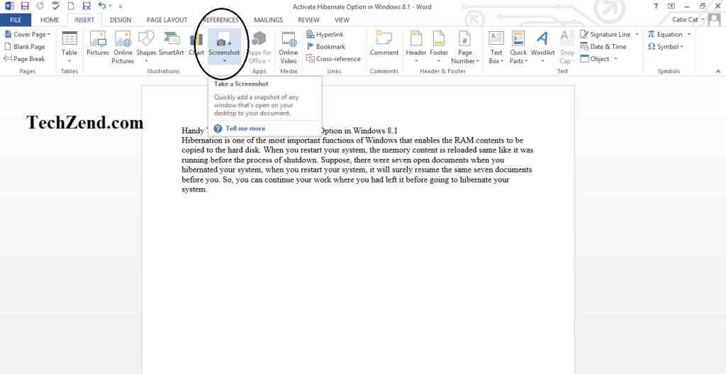 Screenshot Option in Word-2